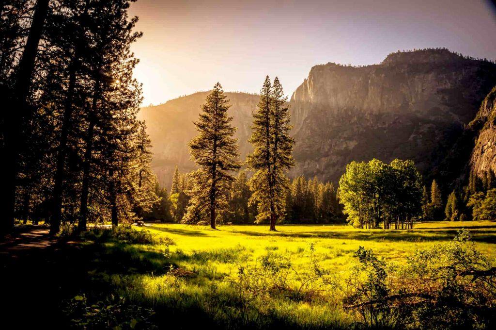 Naturparke Österreich - Landschaften voller Leben